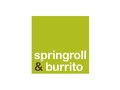 Springroll &amp; Burrito