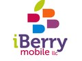 Iberry Logo (Miami)