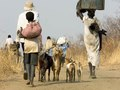 Exile. Internally displaced villagers seek safety, South Sudan