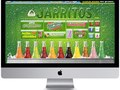 Jarritos | US Launch Campaign