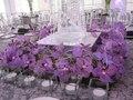Wedding table concept.  Concept de décors de table de mariage