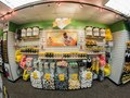 Salt Lake Bees Team Store Remodel - Feature Wall