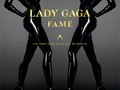 Lady Gaga Fame. Art Direction. Photographed by Steven Klein