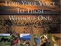 Audubon Society brochure