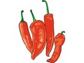 Men's Health : Diary : Hot chilli peppers