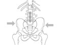 Elsevier : Therapeutic Exercise for Lumbopelvic Stabilization