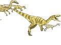 Pearson Education : Prehistoric Predators : Coelophysis
