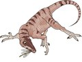 Pearson Education : Prehistoric Predators : Troodon