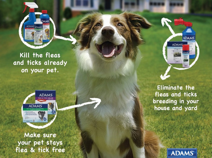 Adams Flea &amp; Tick Control Branding