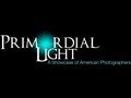 Primordial Light Gallery—All Concept, Design and Execution