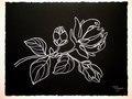 Black Floral n.3