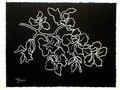 Black Floral n.4