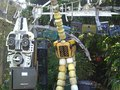 my driveway w/ the big kahuna and giraffe