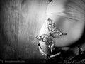 como una mariposa...