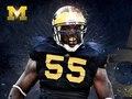 Michigan Football 2010 Poster