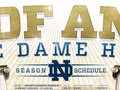 Notre Dame Hockey Poster