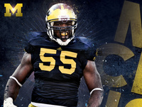 Michigan Football 2010 Poster