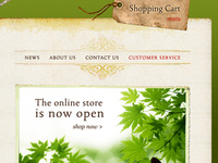 Custom Shopify Theme