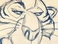 Neff Sketch