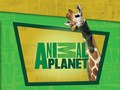 Company: Animal Planet • Assets: Themed Photo Book & Packaging • Role: Graphic Designer, Photo Retoucher