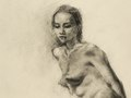 Sheba, Charcoal pencil, 11.8x15.7 inches, Art League Juried Show, July, 2014, Private Collection, New Jersey